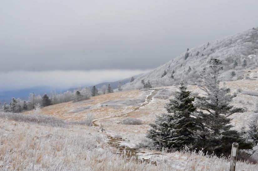 Mini NC Adventure    Roan Mountain: 04 January2016