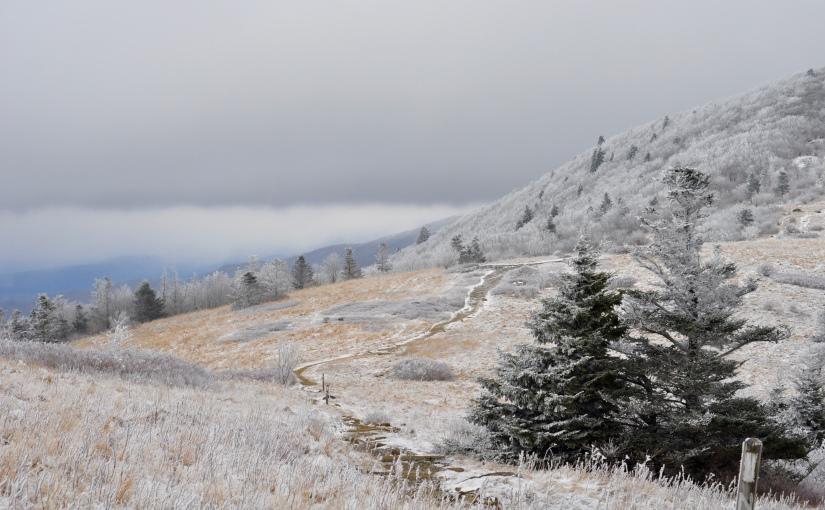 Mini NC Adventure || Roan Mountain: 04 January2016