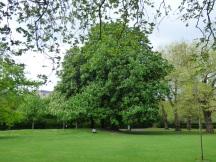 St Stephen's Green