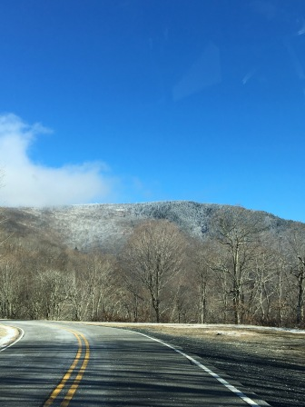 At the first mention of snow, I made my way up to Roan Mountain to see the white fluffy stuff for myself. Unfortunately, I was not prepared for just how cold it was up on the mountain, so I didn't make it very far.