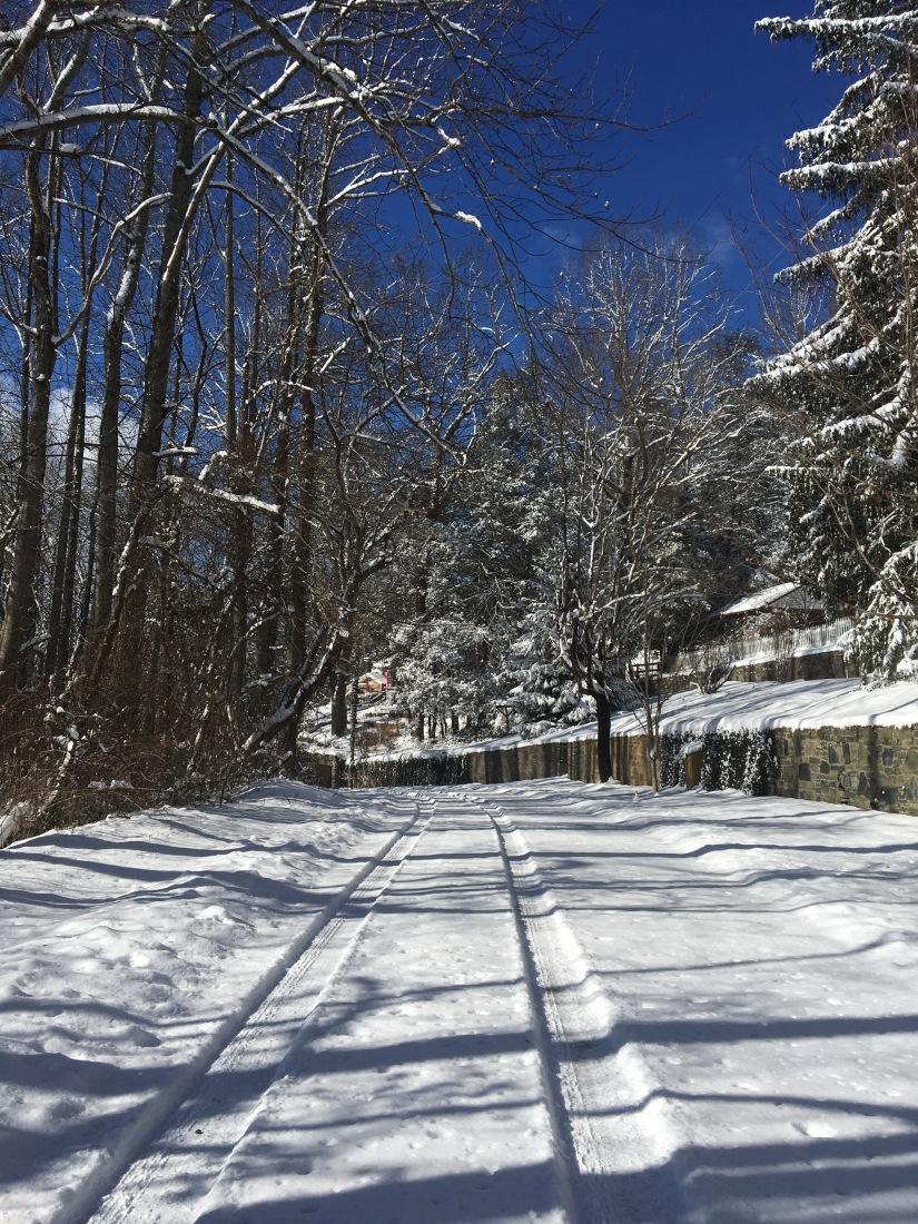 A Perfectly Magical WinterBreak
